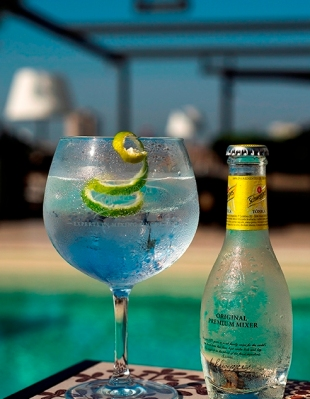 Gin tonic_2