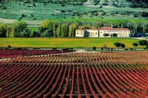La abadía de Retuerta, al fondo del viñedo.