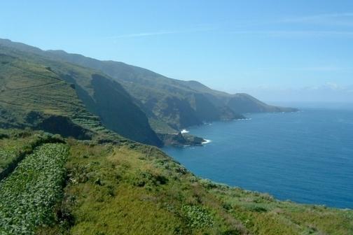 La Palma viñedos costa Norte