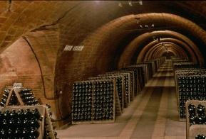 Los pupitres subterráneos.