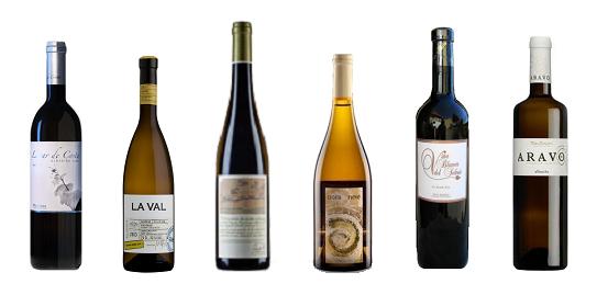 Las botellas ganadoras de la V Cata de Añadas de Rías Baixas