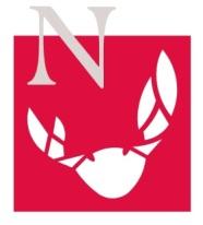 El logo de la fiesta. / BP