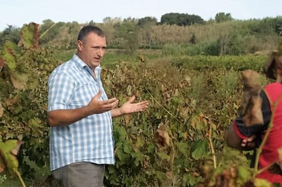 Ton Rimbau, en su viña Els Prats Vella. / TON RIMBAU
