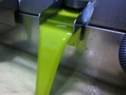 El zumo de la aceituna recién exprimido. / O